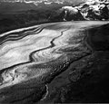 Capps Glacier, valley glacier with winding folia and moraines, and trimline along valley walls, August 30, 1984 (GLACIERS 6452).jpg