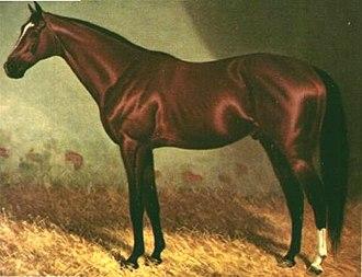 Carbine (horse) - Image: Carbine