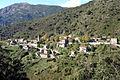 Cargiaca.jpg