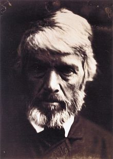 Carlyle like a rough block of Michael Angelo's sculpture, by Julia Margaret Cameron.jpg