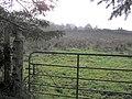 Carnan Hill - geograph.org.uk - 263875.jpg