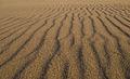 Carpinteria State Beach (15806142661).jpg