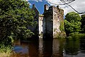 Castles of Munster, Carrigadrohid, Cork (2) - geograph.org.uk - 1392941.jpg