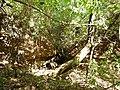 "Cave ""Kantilkata""-Bestovo village - panoramio (3).jpg"