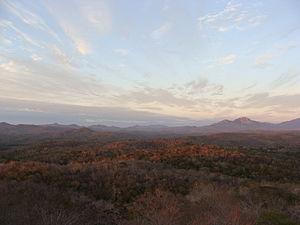 Chamela-Cuixmala Biosphere Reserve - Image: Chamela Cuixmala Dry Forest