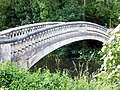 Chelmsford footbridge over River Cann.jpg