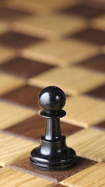 Other Newbie 336px-Chess_piece_-_Black_pawn