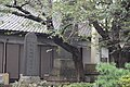 Chiba-dera Temple (29413779483).jpg