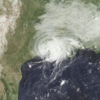 Tropical Storm Chris (1982) Atlantic tropical storm in 1982