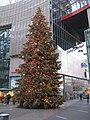 Christmas-tree-denis-apel.JPG