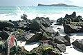 Christmas Iguanas, Isla Espanola, Gardner Bay, Galapagos - panoramio.jpg