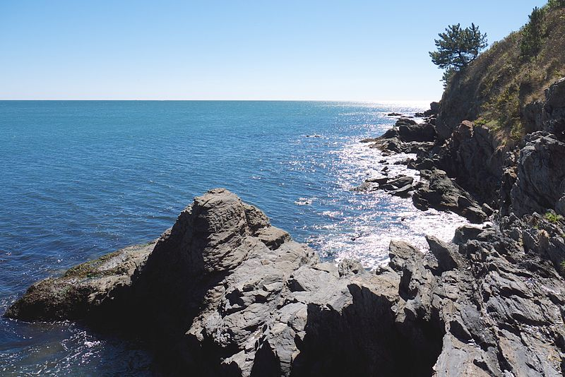 File:Cliff walk newport.jpg