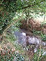 Clipstone Brook - geograph.org.uk - 221168.jpg