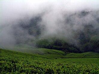 Meghamalai - Cloudy Mountain