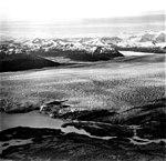 Columbia Glacier, Calving Terminus and Calving Distributaries, July 15, 1977 (GLACIERS 1299).jpg