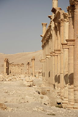 Columns and Funeral temple No 86, Palmyra