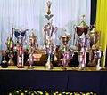Copas del club Acosta Ñu.jpg
