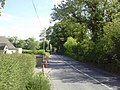 Country Road, Co Meath - geograph.org.uk - 1878192.jpg