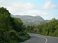 Country Road - geograph.org.uk - 456533.jpg