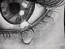 Pencil drawing of a crying eye.