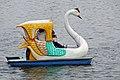 DGJ 1758 - Swan Lake (3509904871).jpg