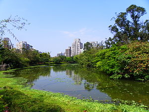 Da'an District, Taipei - Da'an Forest Park is a large public park in the area