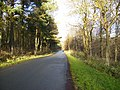 Dalby Forest Drive - geograph.org.uk - 290413.jpg