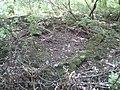 Deep Drop pit. - geograph.org.uk - 928316.jpg