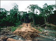 Brazil: Environmental Issues, Policies and Clean Technology