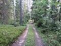 Degučių sen., Lithuania - panoramio (218).jpg
