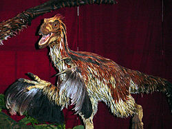 Deinonychus feathered.jpg