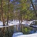 Delaware State Forest Glen.jpg