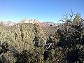 Devil's Bridge Trail, Sedona, Arizona - panoramio (26).jpg