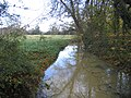 Distributary of the River Welland - geograph.org.uk - 87497.jpg