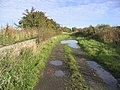 Disused railway - geograph.org.uk - 270059.jpg