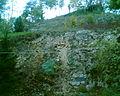 Dość stromo na Pogórzu Bałtowskim - panoramio.jpg