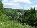 Dobryanskiy r-n, Permskiy kray, Russia - panoramio (213).jpg