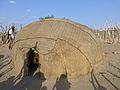 Dodom-Région Afar-Hutte du chef (1).jpg