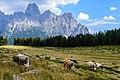 Dolomites (29281480956).jpg