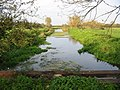 Drainage channel in old water meadows - geograph.org.uk - 273537.jpg