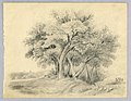 Drawing, Landscape (Leaf from a Sketchbook), 1859 (CH 18446169).jpg