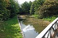 Dudley No 1 Canal - geograph.org.uk - 1510536.jpg