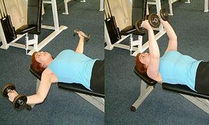 Fly (exercise) - Dumbbell chest fly