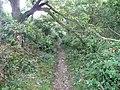 Dye House Lane, Norland - geograph.org.uk - 985087.jpg