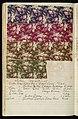 Dyer's Record Book (USA), 1880 (CH 18575299-15).jpg