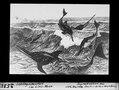 ETH-BIB-Ichthyosaurier im Lias Meer-Dia 247-02535.tif
