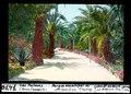 ETH-BIB-Las Palmas, Gran Canaria, Parque municipal de Sta Catalina, Eingang-Dia 247-07470.tif