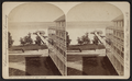 East shore, from piazza of Kent House, by Walker, L. E., 1826-1916.png