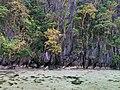 El Nido, Palawan, Philippines - panoramio (81).jpg