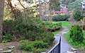 Engelska parken, KTH 1.jpg